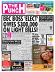 The Punch Online 1 Year Subscription